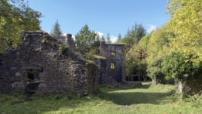 Ruins in the wood. Picturesque ruins of Carrey`s Castle in the wood near Clonmel,Co.Tipperary,Ireland Stock Photos