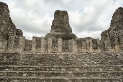 The ruins of Xpujil Maya archaeological site in Mexico. Front view of the ruins of Xpujil Maya archaeological site in Mexico royalty free stock photos