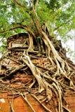 Ruiny świątynie w Koh Kher stary kapitał Kambodża Zdjęcie Stock