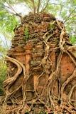 Ruiny świątynie w Siem Przeprowadzają żniwa w Kambodża Obrazy Royalty Free