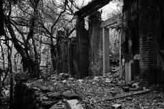 ruiny Fotografia Royalty Free