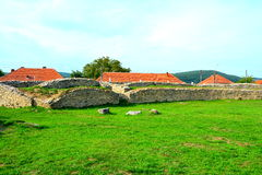 Ruiny amfiteatr w Ulpia Traiana Augusta Dacica Sarmizegetusa Fotografia Stock