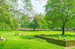 Ruiny amng drzewa Zdjęcie Stock