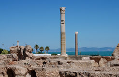 Ruiny antyczny Carthage, Tunezja Zdjęcie Royalty Free
