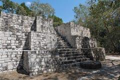 Ruiny antyczny Majski miasto calakmul, Campeche, Mexic zdjęcia stock