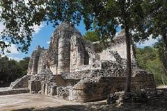 Ruiny antyczny majski miasto hormiguero, Campeche, Meksyk Zdjęcie Stock