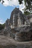 Ruiny antyczny majski miasto hormiguero, Campeche, Meksyk Zdjęcia Stock
