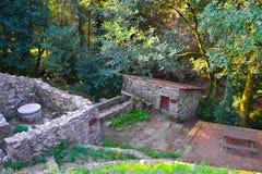 Ruiny antyk mieścą i uprawiają ogródek robią kamień Ruiny Zdjęcie Royalty Free