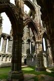 Ruiny Benedyktyński opactwo, lokalizować na malowniczych falezach Whitby zdjęcie royalty free