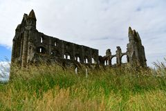 Ruiny Benedyktyński opactwo, lokalizować na malowniczych falezach Whitby zdjęcia royalty free