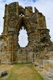 Ruiny Benedyktyński opactwo, lokalizować na malowniczych falezach Whitby zdjęcie stock