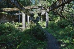 Ruiny blaszana fabryka blisko wioski Rolava niemiec Sauersack w Rudnych górach fotografia royalty free