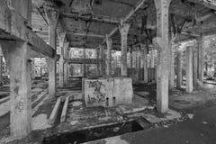 Ruiny blaszana fabryka blisko wioski Rolava niemiec Sauersack w Rudnych górach obrazy stock