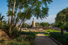 Ruiny Chellah necropolis rabat Maroko Zdjęcia Royalty Free