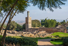 Ruiny Chellah necropolis rabat Maroko Fotografia Royalty Free
