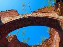 Ruiny dach świątynia, przerastający z drzewami, inside widok zdjęcia royalty free