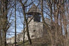 Ruiny Grodowy Nevytske blisko Transcarpathian regionu centrum, Uzhgorod fotografia ruina budować grodowego wieka nevitsky ruiny U Zdjęcia Stock