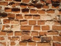 Ruiny Krevsky kędziorek cegła biel odosobniony czerwony Białoruś Zdjęcie Stock