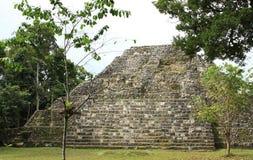 Ruiny Majska świątynia przy Yaxha, Gwatemala Fotografia Royalty Free