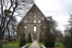 Ruiny monaster święty Brigitta Pirita w Tallinn wewnątrz Obraz Royalty Free