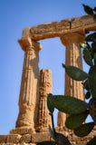Ruiny Poprzednia świątynia w Agrigento Fotografia Stock