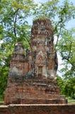 Ruiny przy Watem Maha Który w Ayutthaya Zdjęcie Stock