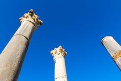 Ruiny rzymski miasto Volubilis, UNESCO światowego dziedzictwa miejsce obraz royalty free