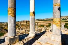 Ruiny rzymski miasto Volubilis, UNESCO światowego dziedzictwa miejsce zdjęcie royalty free