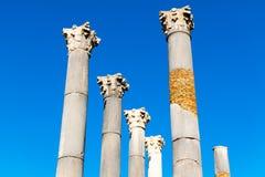 Ruiny rzymski miasto Volubilis, UNESCO światowego dziedzictwa miejsce Meknes, Maroko zdjęcie stock