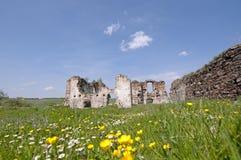 Ruiny stary forteca Fotografia Royalty Free