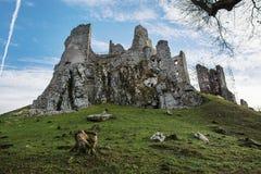 Ruiny stary grodowy Hrusov Obrazy Stock