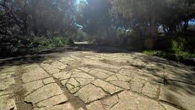 Ruiny Tipasa (Tipaza) Wygłupy miasto był colonia w Romańskim gubernialnym Mauretania Caesariensis locat zbiory