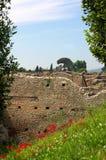 Ruiny Włochy Obrazy Royalty Free