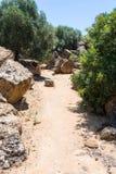 Ruiny w Olympeion polu w Agrigento, Sicily Obraz Stock