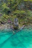 Ruiny w rzece Zdjęcie Royalty Free
