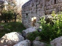 Ruiny w wiośnie Zdjęcie Stock