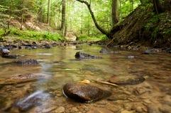 Ruisseau Photo libre de droits