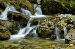 Ruisseau Photographie stock libre de droits