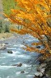 Ruisseau Image libre de droits