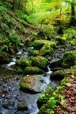 Ruisseau anglais de bavardage photo libre de droits