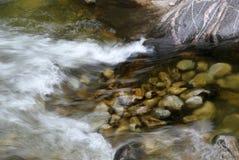 Ruisseau au printemps Photo stock