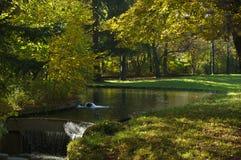 Ruisseau automnal Photo libre de droits