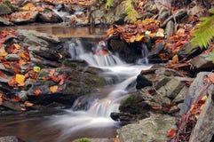 Ruisseau d'automne Image libre de droits