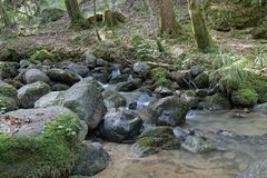 Ruisseau de Ла Gafe Стоковое Изображение