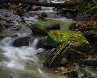 Ruisseau de bavardage Photographie stock