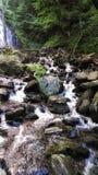 Ruisseau de bavardage Images stock
