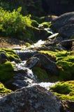 Ruisseau de montagne Image libre de droits