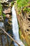 Ruisseau de montagne Images stock