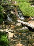 Ruisseau de montagne en stationnement national de bassin grand, Nevada image stock
