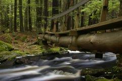 Ruisseau de purgatoire Image stock